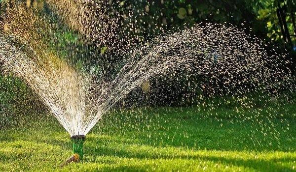 Система поливу для городу: крапельне зрошення, дощовики, автоматичні системи